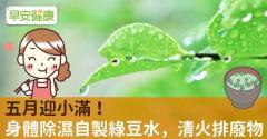 五月迎小滿!身體除濕自製綠豆水,清火排廢物