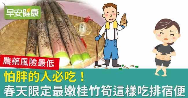 怕胖的人必吃!春天限定最嫩桂竹筍這樣吃排宿便