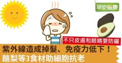 紫外線造成掉髮、免疫力低下!酪梨等3食材助細胞抗老