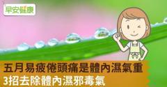 五月易疲倦頭痛是體內濕氣重,3招去除體內濕邪毒氣