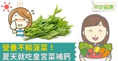 營養不輸菠菜!夏天就吃皇宮菜補鈣
