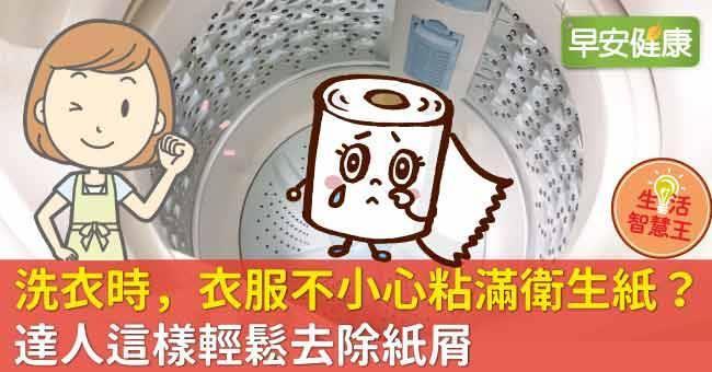 洗衣時,衣服不小心粘滿衛生紙?達人這樣輕鬆去除紙屑