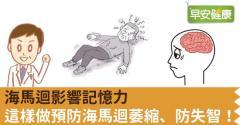 海馬迴影響記憶力,這樣做預防海馬迴萎縮、防失智!