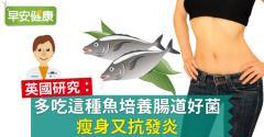 英國研究:多吃這種魚培養腸道好菌,瘦身又抗發炎